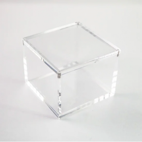 Acrylic Display Case by sOMEThING